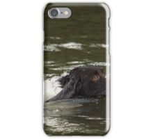 Dog Swimmer iPhone Case/Skin