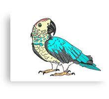 Perfect Parrot Canvas Print