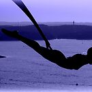 Flying into Sunset by Charmiene Maxwell-Batten