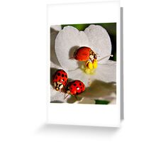 Lunch with Friends Greeting Card