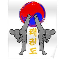 taekwondo badge grey korean martial art kick and punch Poster