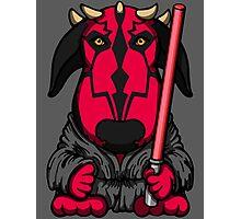Dark Side Bull Terrier Photographic Print