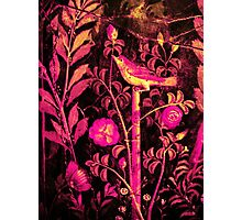 POMPEII COLLECTION NIGHTINGALE WITH PINK ROSES Photographic Print