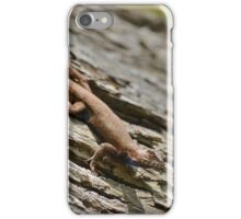 A Lizard on a Log in the Forest on a Spring Day in Georgia iPhone Case/Skin
