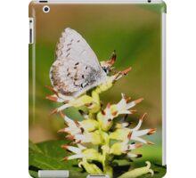 Spring Azure iPad Case/Skin