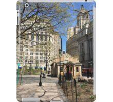bAtTERY pARk, NEWYORK iPad Case/Skin