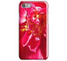 Red Flower 2 iPhone Case/Skin