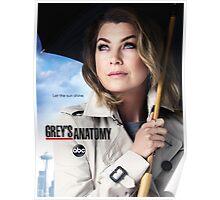 Grey's Anatomy Season 12 Poster Poster