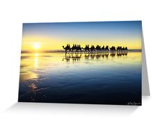 The Cable Beach Camels Greeting Card