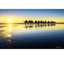 The Cable Beach Camels Photographic Print