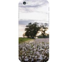 Cotton Field 9 iPhone Case/Skin
