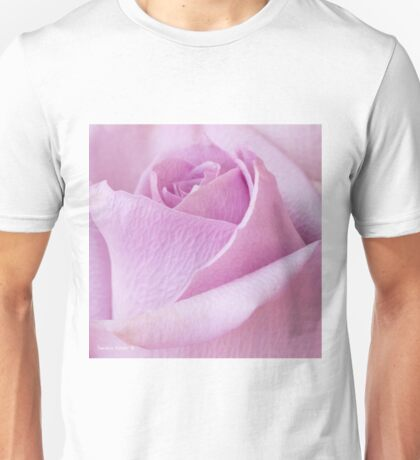 Delicate Lavender Rose Macro Unisex T-Shirt