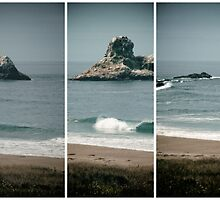 California Coast Triptych by 2HivelysArt