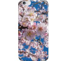 Springtime's blossoming iPhone Case/Skin