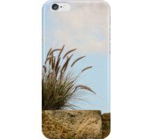 Excursion to Cockatoo Island in Sydney/NSW/Australia (10) iPhone Case/Skin