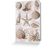 sea shells ocean journey Greeting Card