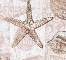 sea shells ocean journey Sticker