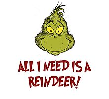 All i need is a reindeer - quote Photographic Print