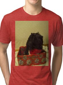 shih tzu Christmas time Tri-blend T-Shirt