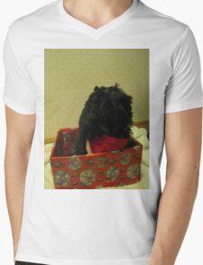 shih tzu Christmas time Mens V-Neck T-Shirt