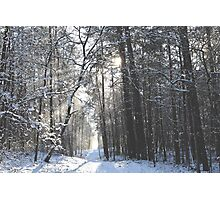 Winter wonderland Photographic Print