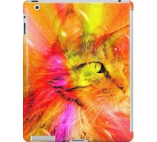 Funky Portrait of a Maine Coon cat    iPad Case/Skin