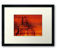 Willow over orange sky Framed Print