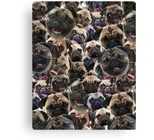 Pugs, not drugs Canvas Print