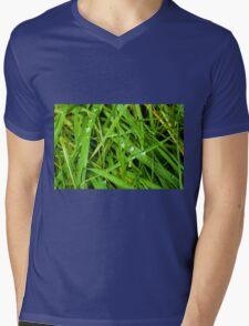 Winter Grass Mens V-Neck T-Shirt