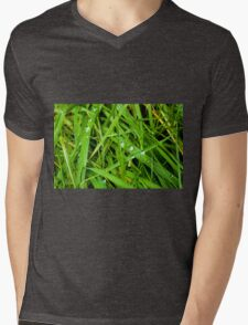 Winter Grass Mens V-Neck T-Shirt