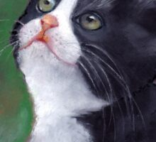Cat Looking Up: Kitten: Oil Pastel Painting Sticker