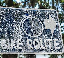 Savannah bike route by Andrew O'Hara