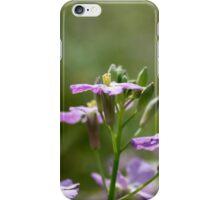 Spring Flower, Purple iPhone Case/Skin