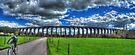 Digswell Viaduct by Nigel Bangert