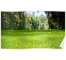 Green Pasture Poster