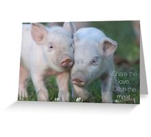 Cute Piglets Poster for Vegans/Vegetarians Greeting Card