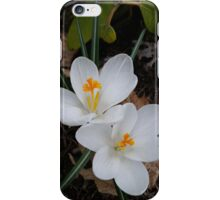 Ivory Blooms iPhone Case/Skin