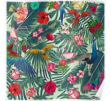 tropical fun nature  Poster