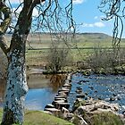 Spring Stepping Stones by Sue Knowles