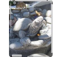 Fountain of Stone iPad Case/Skin