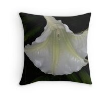 flower, white, angel trumpet, fragrant, Throw Pillow