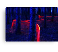 Red Trail Lightpaint Canvas Print