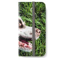 Springer Spaniel iPhone Wallet/Case/Skin