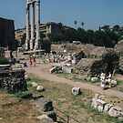 Temple of Castor and Pollux Rome Italy 19840719 0017 by Fred Mitchell