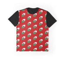 Rugby Wales Graphic T-Shirt