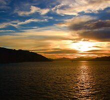 Queen Charlotte Sound by Barbara  Brown