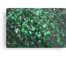 The Day I Watched Myself across the Fence Metal Print