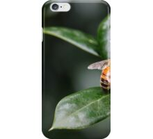 Honey bee 2 iPhone Case/Skin