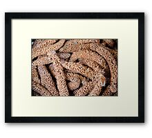 Nature Abstract 4 Framed Print