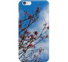 red buds blue sky iPhone Case/Skin